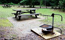 Bellbird campground - Australia Accommodation