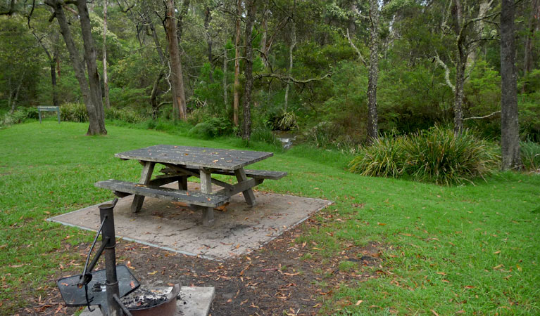 Chaelundi campground - Australia Accommodation