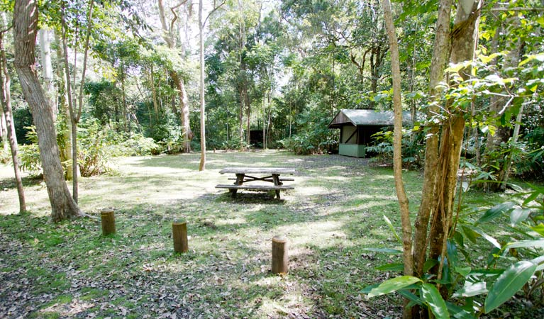 Iron Pot Creek campground - Australia Accommodation