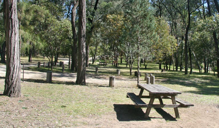 Lemon Tree Flat campground - Australia Accommodation