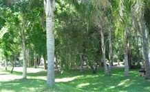 Lismore Palms Caravan Park - Australia Accommodation