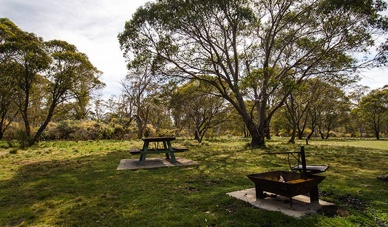 Little Murray campground - Australia Accommodation
