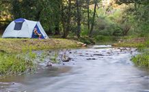 Nymboida Camping  Canoeing - Australia Accommodation