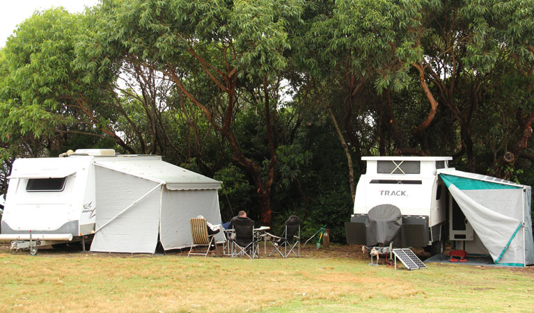 Pretty Beach campground - Murramarang National Park - Australia Accommodation