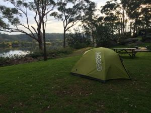 Shoalhaven Zoo Camping Reserve - Australia Accommodation