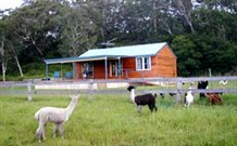 Moorallie Cottage Farm Stay - Australia Accommodation