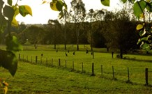 Stone Cottage Mittagong - Australia Accommodation