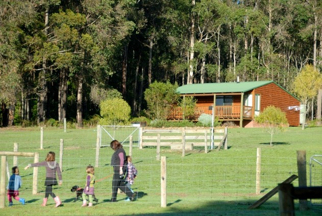 Diamond Forest Cottages Farmstay - Australia Accommodation