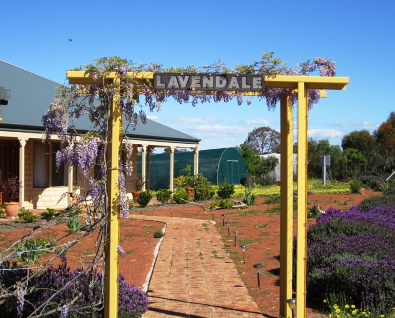 Lavendale Farmstay and Cottages - Australia Accommodation