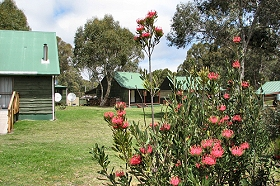 Derwent Bridge Chalets  Studios - Australia Accommodation
