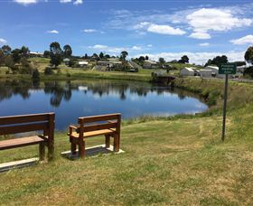 Waratah Caravan and Camping Ground - Australia Accommodation