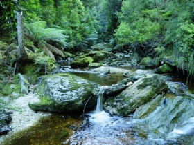 Tarkine Wilderness Experience at Corinna - Australia Accommodation