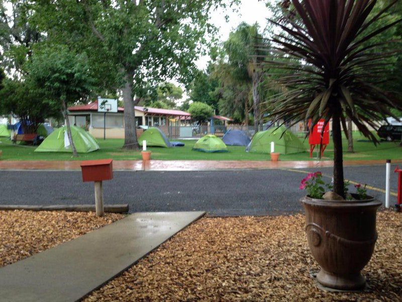 Young Caravan Tourist Park - Australia Accommodation