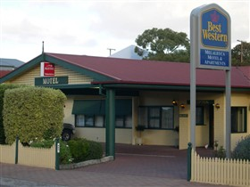 Best Western Melaleuca Apartments - Australia Accommodation