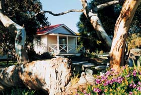 Cape Jervis Holiday Units - Australia Accommodation