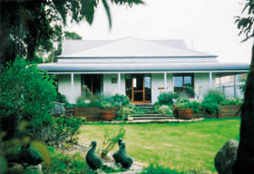 Cricklewood Cottage - Australia Accommodation