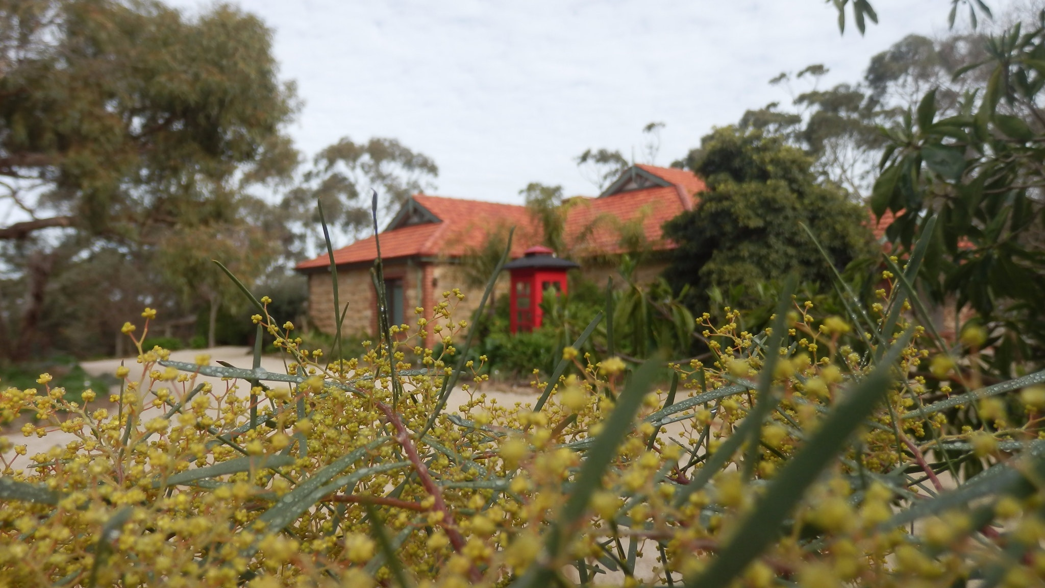 Mount Charmal Bed And Breakfast - Australia Accommodation