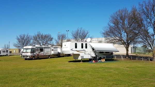 Murray Bridge Show Grounds - RV Friendly campaing - Australia Accommodation