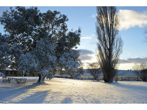 Snowy Mountains Resort and Function Centre - Australia Accommodation