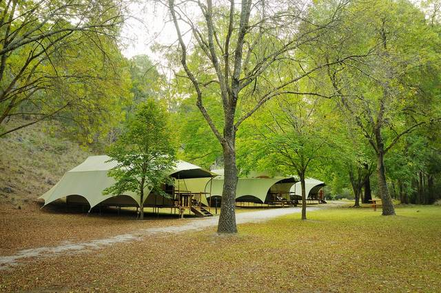 Buchan Caves Reserve - Australia Accommodation