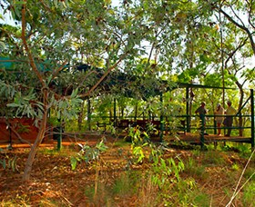 Arnhemland Barramundi Nature Lodge - Australia Accommodation
