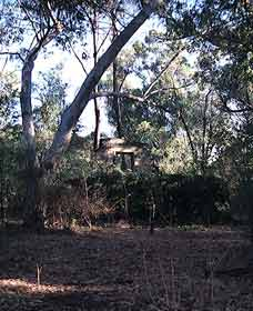 Ghost House Walk Trail Yanchep National Park - Australia Accommodation