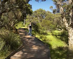 Leschenault Peninsula Conservation Park - Australia Accommodation