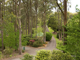 Mount Lofty Botanic Garden - Australia Accommodation