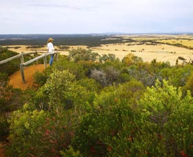 Archer Drive Scenic Drive and Lookout - Australia Accommodation