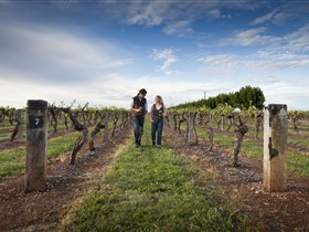 Coonawarra Wineries Walking Trail - Australia Accommodation