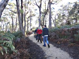 Bridport Walking Track - Australia Accommodation