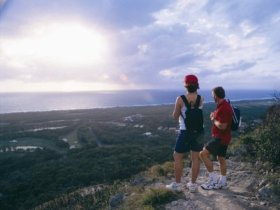 Mount Coolum National Park - Australia Accommodation
