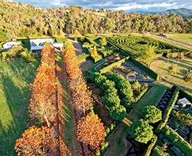High Country Maze - Australia Accommodation