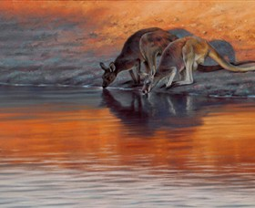 Steve Morvell Wildlife Art - Australia Accommodation