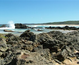 Coastal Walks - Bermagui - Australia Accommodation