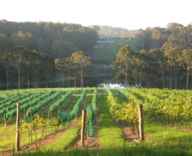 Tilba Valley Wines - Australia Accommodation