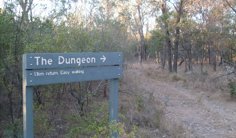 Dungeon lookout - Australia Accommodation
