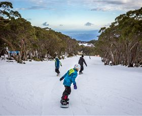 Mt Baw Baw Alpine Resort - Australia Accommodation