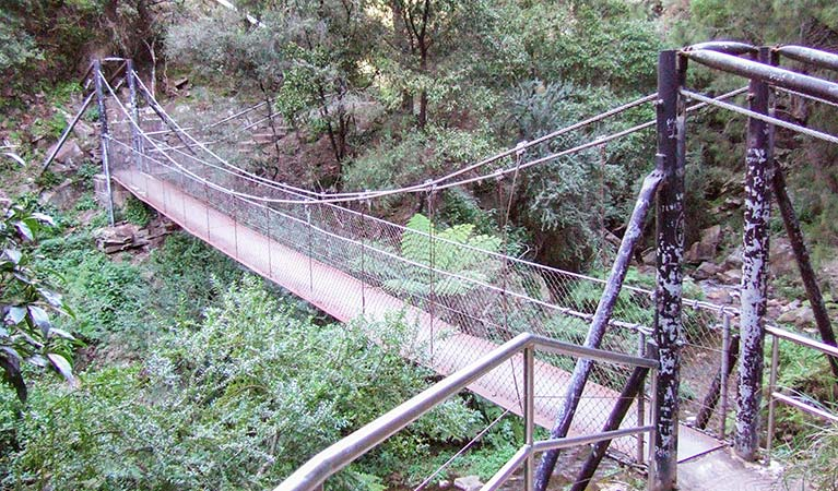 Jenolan River walking track - Australia Accommodation