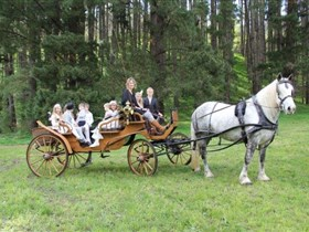 Classic Carriage Drives - Australia Accommodation