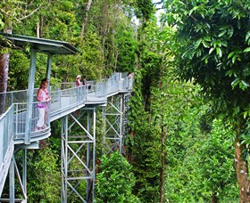 Mamu Tropical Skywalk - Australia Accommodation