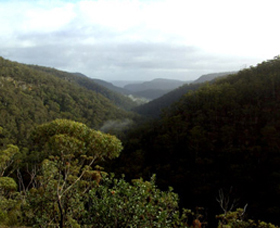 Nattai Gorge Lookout - Australia Accommodation