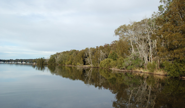 Lake Macquarie State Conservation Area - Australia Accommodation