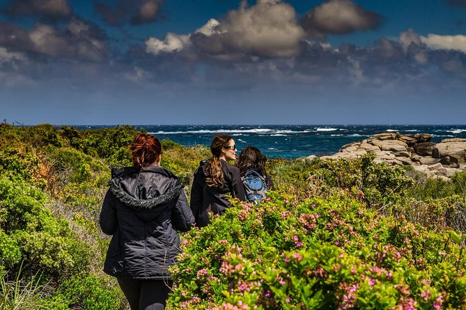 Guided Walks on the Cape to Cape - Wilyabrup Cliffs - Australia Accommodation