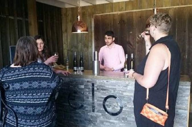 Tamar Valley Food and Wine Day Trip from Devonport Ulverstone or Burnie - Australia Accommodation