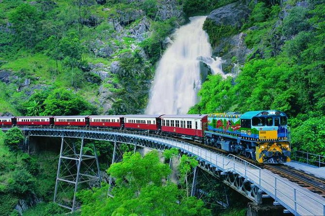 Full-Day Tour with Kuranda Scenic Railway Skyrail Rainforest Cableway and Hartley's Crocodile Adventures from Cairns - Australia Accommodation