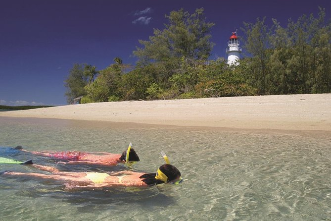Wavedancer Low Isles Great Barrier Reef Sailing Cruise from Palm Cove - Australia Accommodation