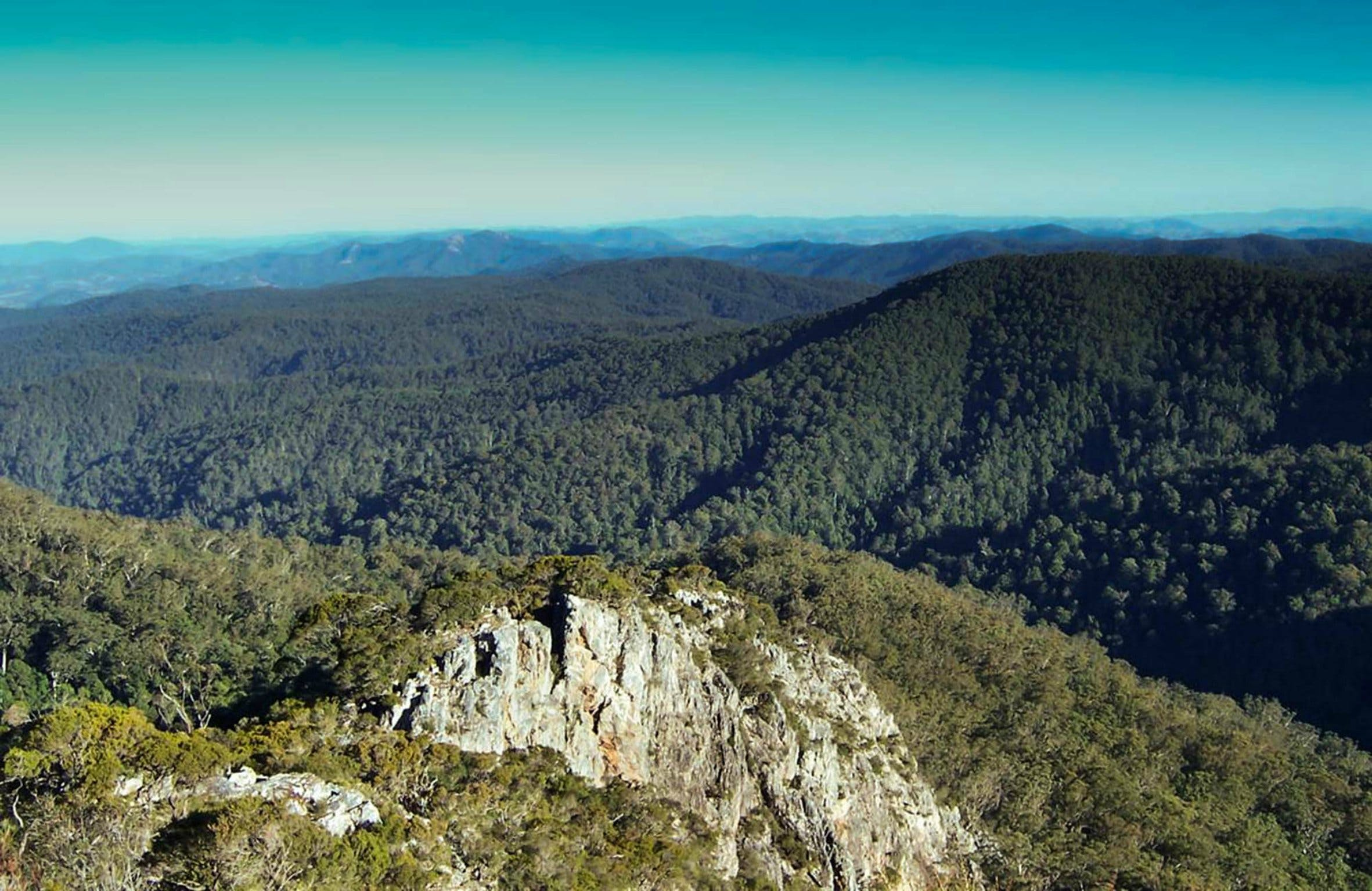 Tapin Tops National Park - Australia Accommodation