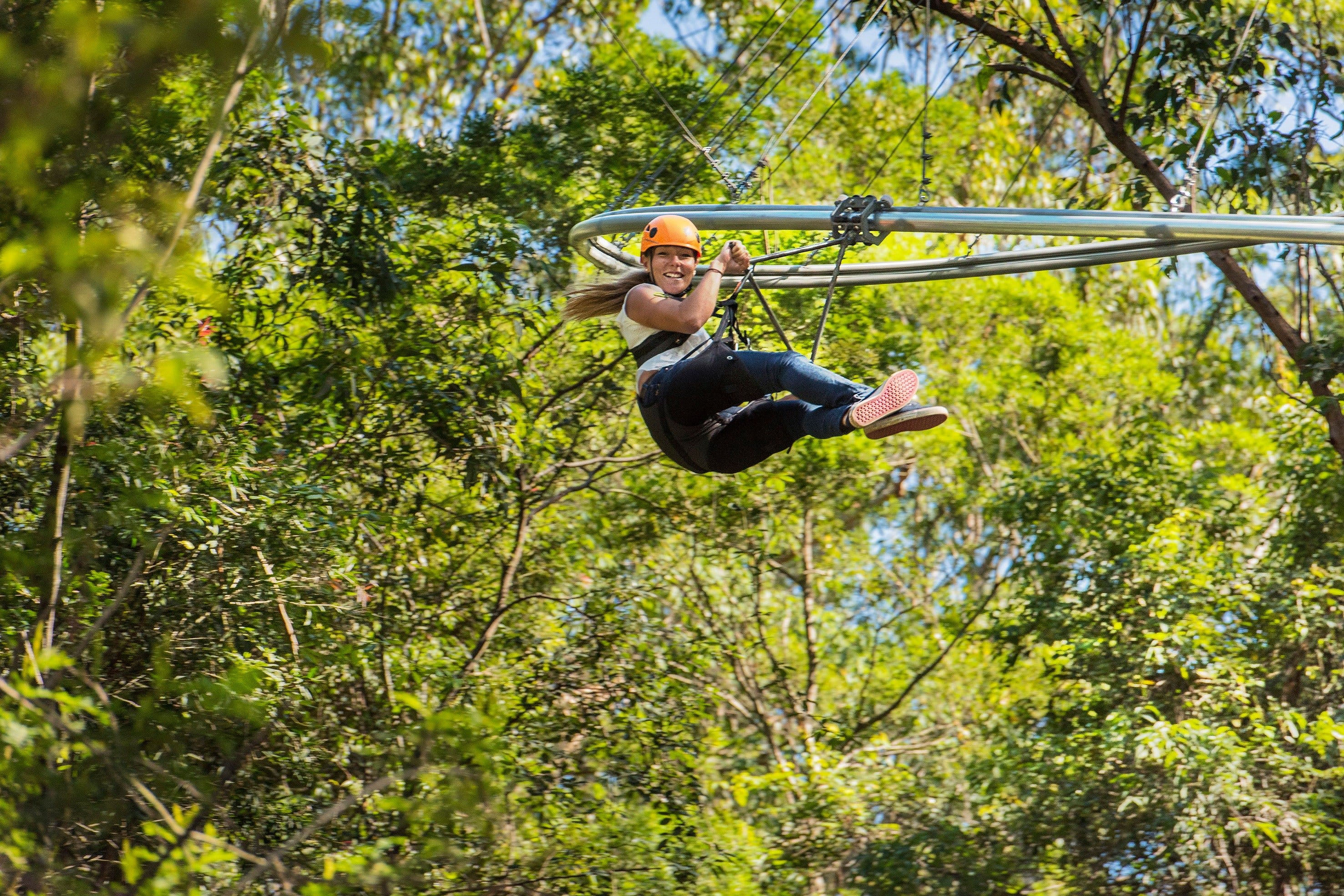 TreeTop Crazy Rider - Australia Accommodation