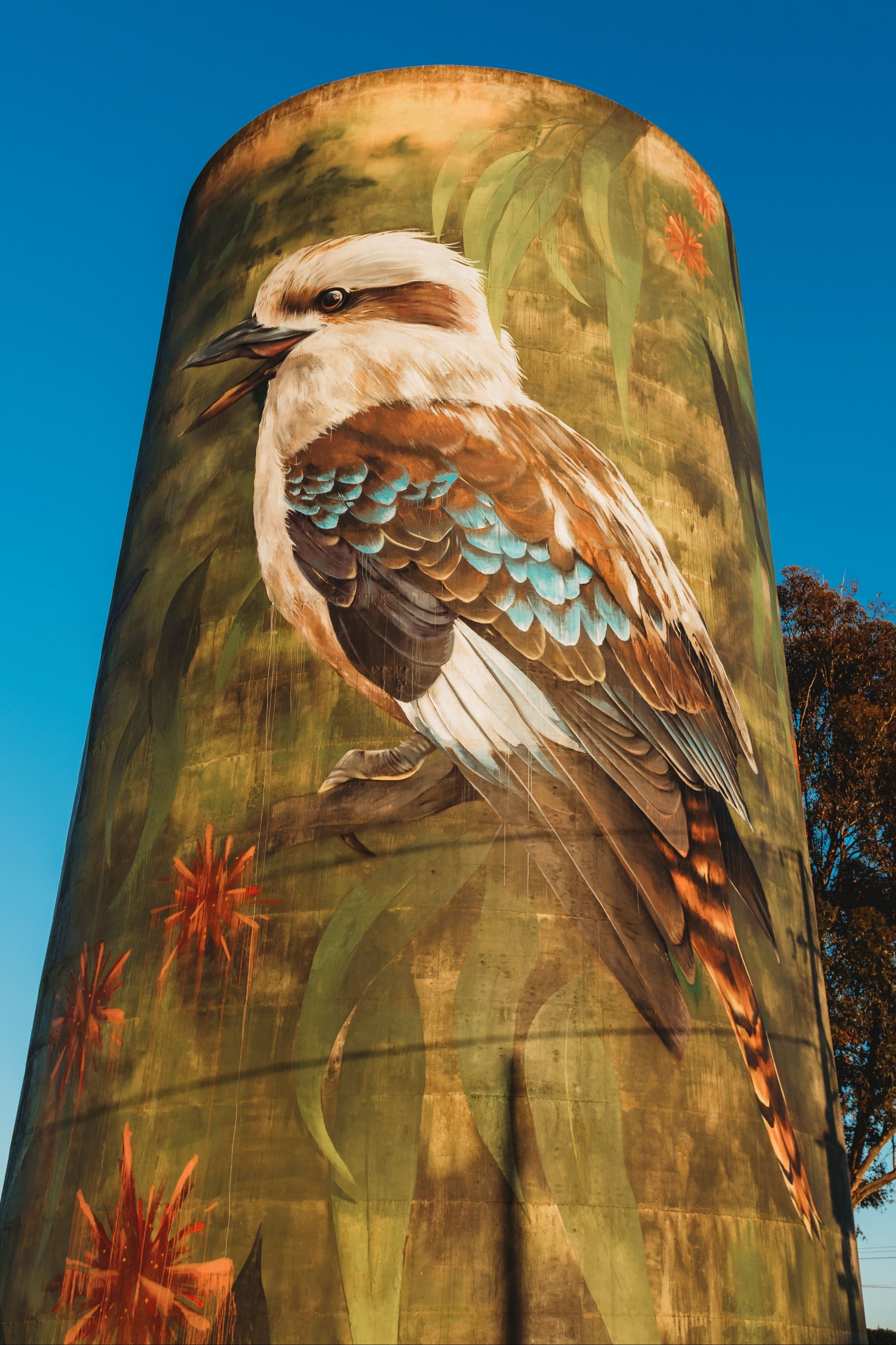Deniliquin Water Tower Mural - Australia Accommodation